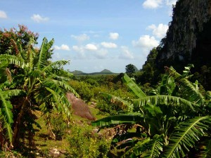 Phanom Bencha Mountain Resort in Krabi, Thailand.